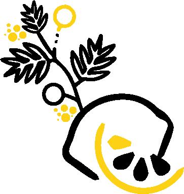 Citron Mimosa